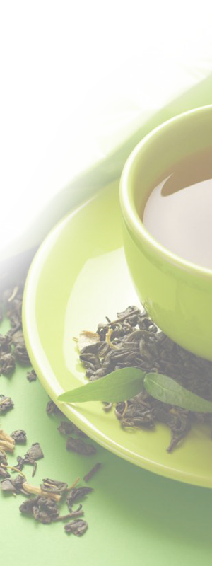 Ceylon tea exporters in Sri lanka